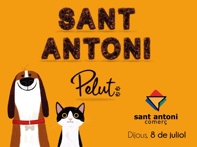 Sant Antoni pelut: La Festa Major dels animals